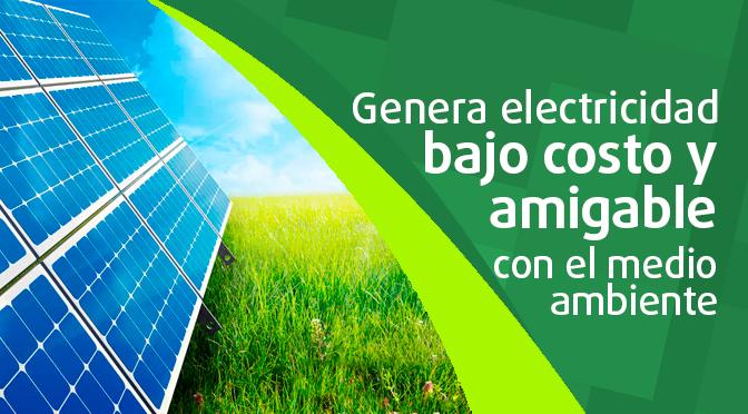 Paneles Solares Genera Electricidad A Bajo Costo Y