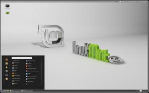 linux_mint_envoiroment